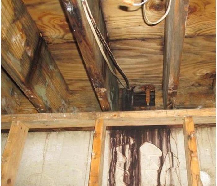 Mold Develops from a Flat Roof Leak Before
