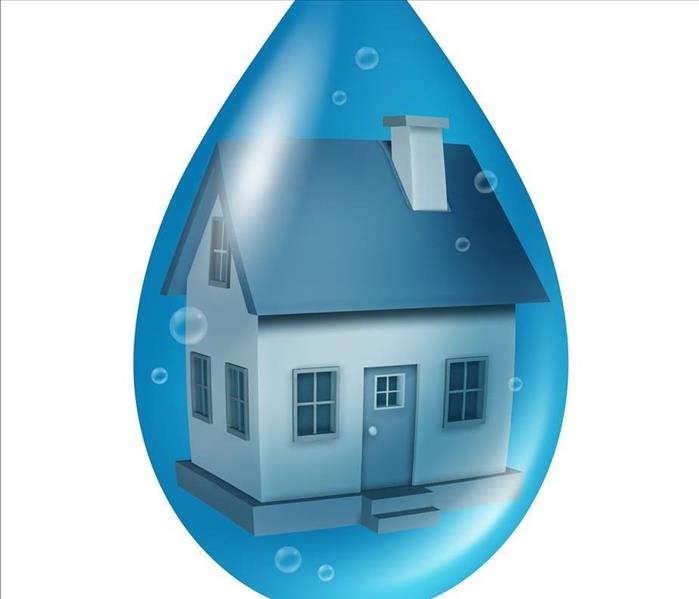 Water Damage Reasons To Call a Water Remediation Specialist for Your Bucktown Home