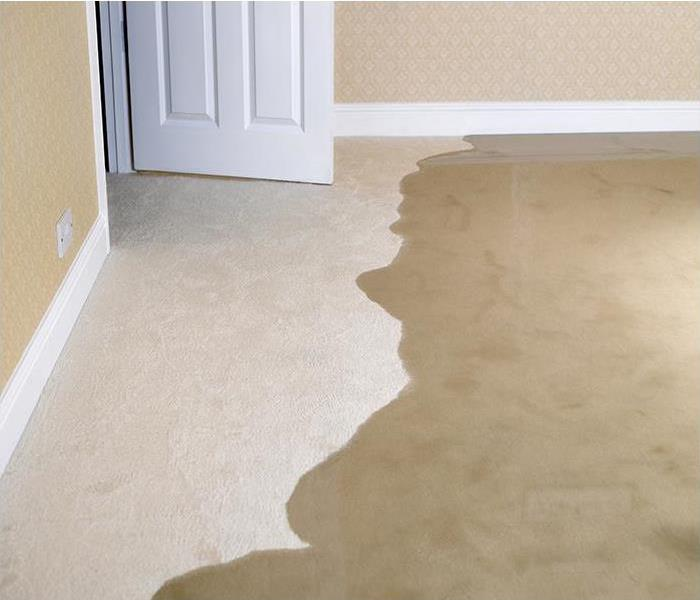 Water Damage Water Removal Services That Help Protect Your Chicago Area Property