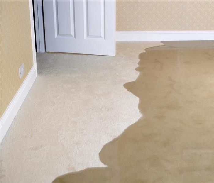 Water Damage Get Your Life Back on Track with Professional Water Removal Services in Chicago